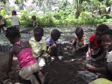 Children help plant the tree seedlings for the project.